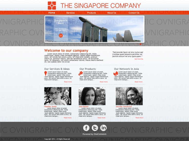 The Singapore Company Home Page